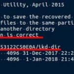 5-2-8:保存先ディレクトリがikd-dirであることを確認したら、「c」キーを押す。